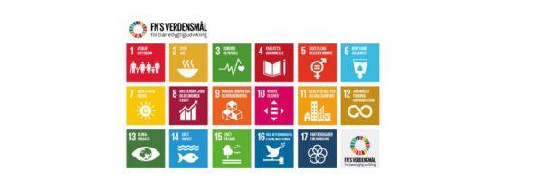 6. februar 2019: Morgenmøde om FN's 17 verdensmål